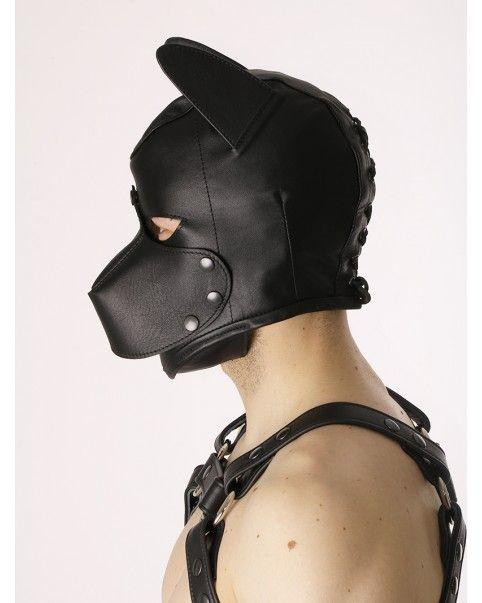 Cagoule chien cuir